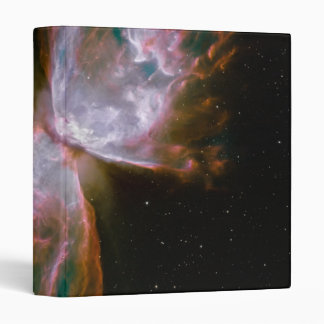 Butterfly Emerges from Stellar Demise in Planetary Binders