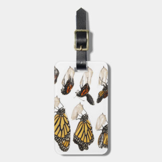 Butterfly emerging from coccoon luggage tag
