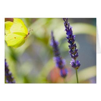 butterfly en vuelo tarjeta de felicitación