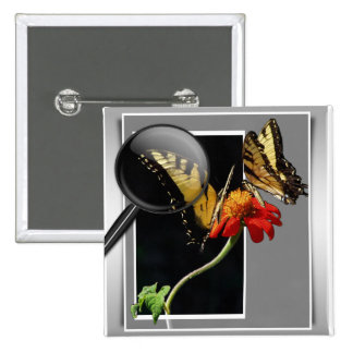 BUTTERFLY EXAMINATION - MAGNIFYING GLASS 2 INCH SQUARE BUTTON