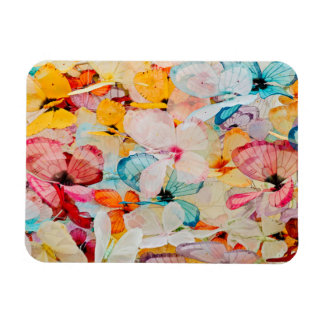 Butterfly exhibit magnet
