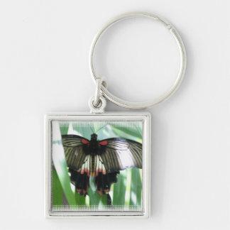 Butterfly Farm Keychain