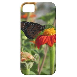 Butterfly Feeding on Flower iPhone 5 Case