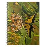 Butterfly Feeding on Flower Notebook