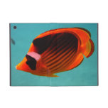 Butterfly Fish iPad Mini Covers