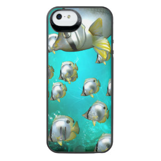 Butterfly fish iPhone SE/5/5s battery case
