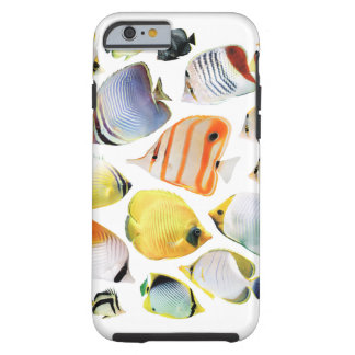 Butterfly fishes tough iPhone 6 case