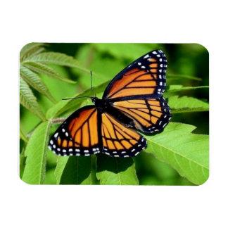 Butterfly flexible magnet