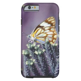 Butterfly flitter flutter tough iPhone 6 case