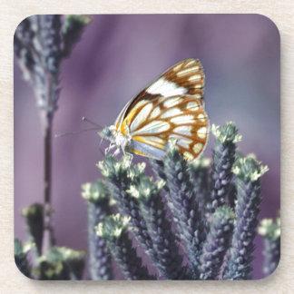 Butterfly Flitter Flutter vintage Drink Coaster
