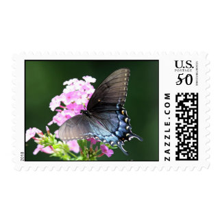 Butterfly & Flower stamp