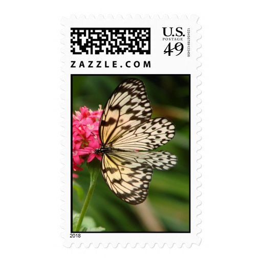 Butterfly Flowers 1 Stamp