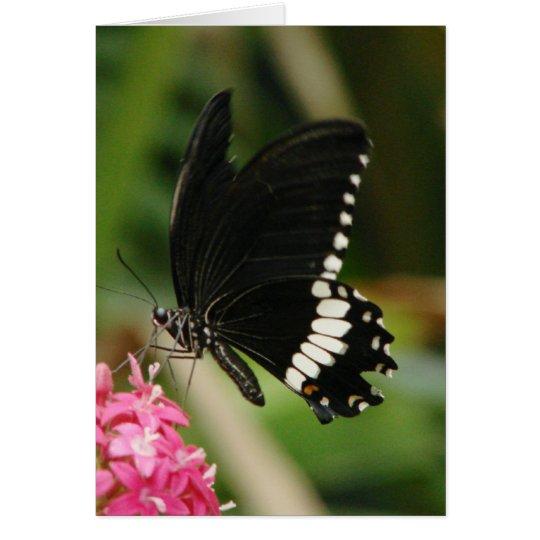 Butterfly Flowers 3 Card