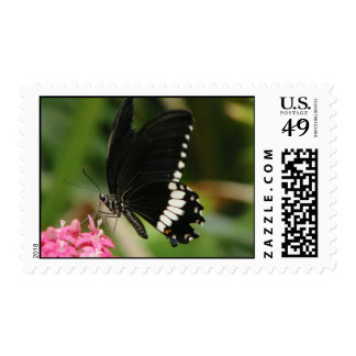 Butterfly Flowers 3 Postage
