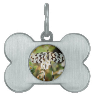 Butterfly Flowers Blossoms Wedding Shower Peace Pet Name Tags