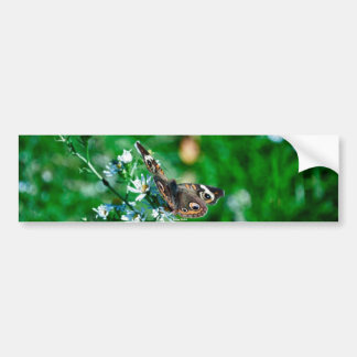 Butterfly & Flowers Bumper Sticker