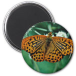 Butterfly  flowers fridge magnet