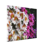 Butterfly Flowers Pink White and Purple Floral Canvas Print
