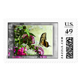 Butterfly Flowers Stamp