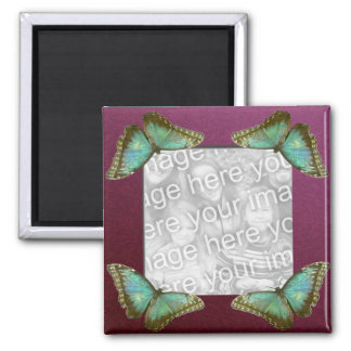 Butterfly Frame 2 Inch Square Magnet