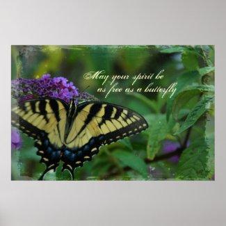 Butterfly Free Spirit Poster Print print