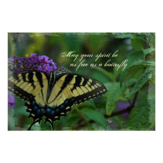 Butterfly Free Spirit Poster Print