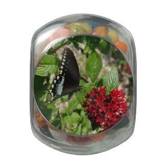 Butterfly Garden Glass Jar