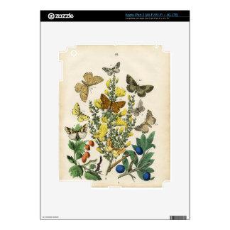 Butterfly Garden iPad 3 Skin