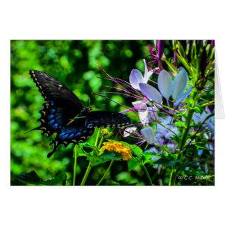 Butterfly Garden Moment Card