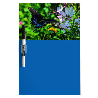 Butterfly Garden Moment Dry-Erase Board