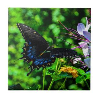 Butterfly Garden Moment Tile