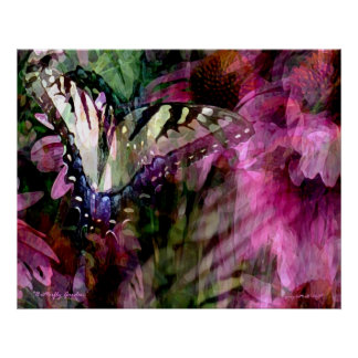 Butterfly Garden Poster