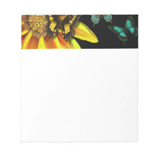 Butterfly Gardens Note Pads