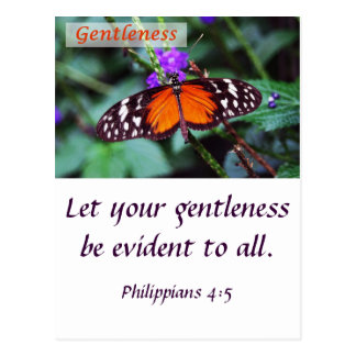 Butterfly - Gentleness Postcard