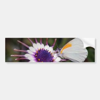 Butterfly gifts bumper sticker