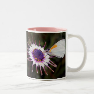 Butterfly gifts Two-Tone coffee mug