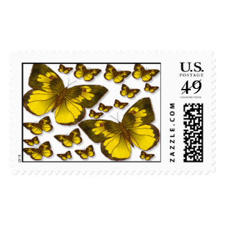 Butterfly Group Postage Stamps