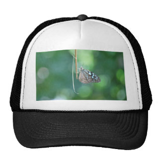 Butterfly Hanging From A Twig Trucker Hat
