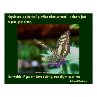 Butterfly Happiness Affirmations Poster Print