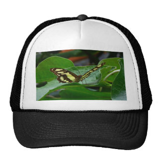 Butterfly Mesh Hat