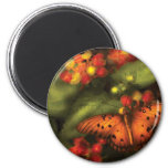 Butterfly - Heliconius Fridge Magnet