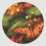 Butterfly - Heliconius Stickers