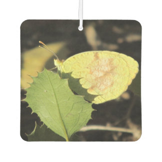 Butterfly Hiding Behind a Leaf Car Air Freshener