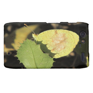 Butterfly Hiding Behind a Leaf Droid Razr Case