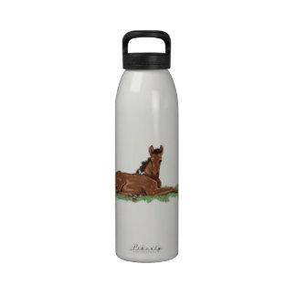 Butterfly Horse Colt Water Bottle