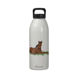 Butterfly Horse Colt Reusable Water Bottle