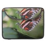 "Butterfly Identification 15"" MacBook Sleeve Sleeve For MacBooks"