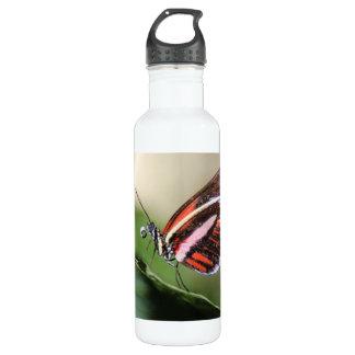 Butterfly Identification 24oz Water Bottle