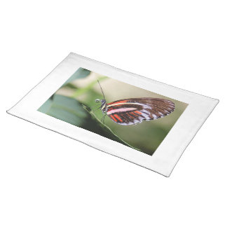 Butterfly Identification Placemat Cloth Place Mat