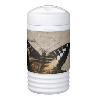 Butterfly Igloo Beverage Cooler